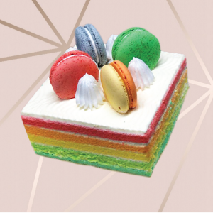 Rainbow Cake with 4 macarons